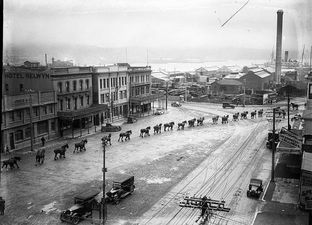 Procession of Clydesdale horses on Cambridge Terrace, Wellington, [ca 1920s] | via Flickr