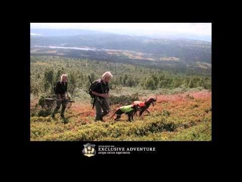 Wildlife adventure with Exclusive adventure, Jon Henrik Fjällgren sings - YouTube
