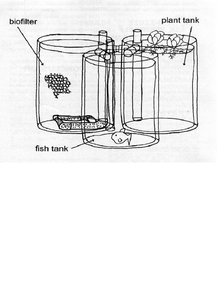 43 best aquaponics images on pinterest aquaponics system diy urban aquaculture manual solutioingenieria Choice Image
