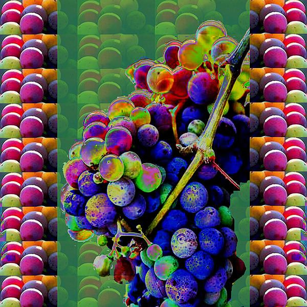 Grapes Fruit Pattern Health Background Designs And Color Tones N Color Shades Available For Downloa