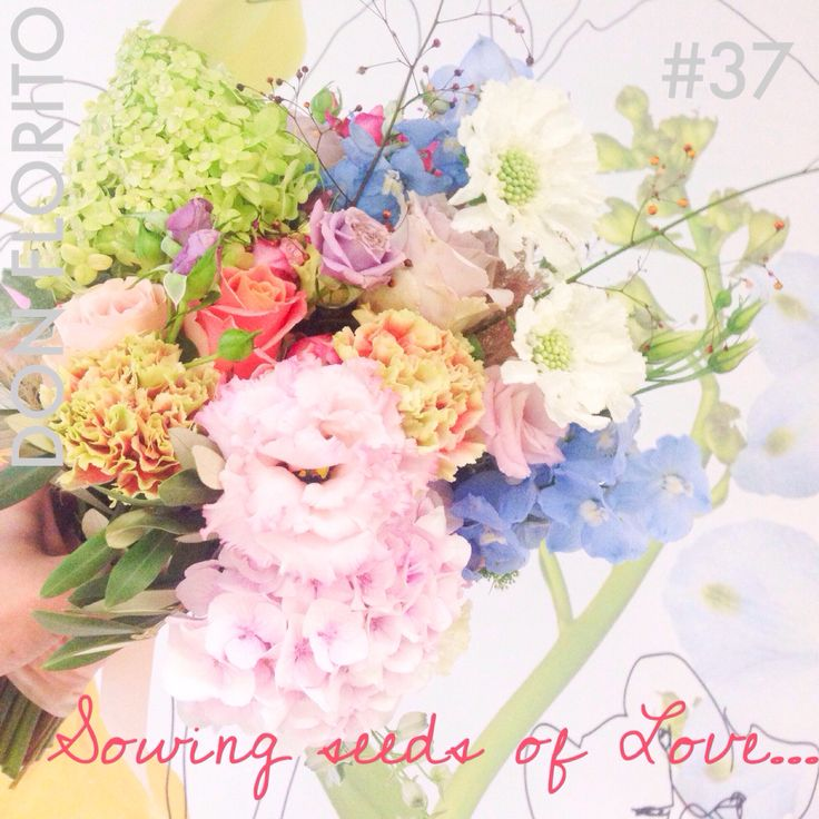 L O V E S H O T by DON FLORITO #37 #love #flowers #donfloritorules