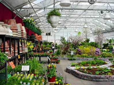 Plant Nursery Centers Bing Images Center Pinterest Garden And Plants