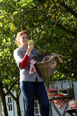 Plant apple and pear trees to have fresh fruit from your garden #plants