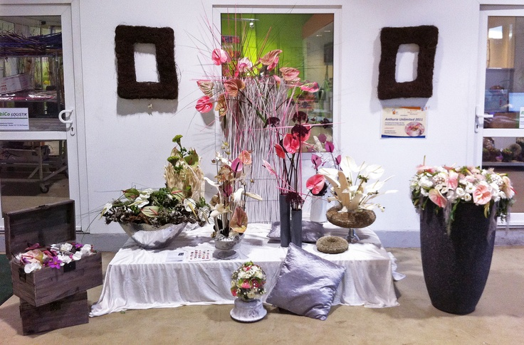 Another wholesale presentation with Anthurium. To inspire the florists.
