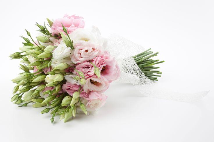 17 mejores ideas sobre flores baratas en pinterest cosas for Plantas baratas