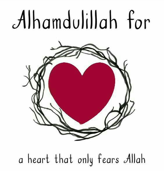 ayeina's gratitude journal for muslims - #AlhamdulillahForSeries - Alhamdulillah for a heart that only fears Allah