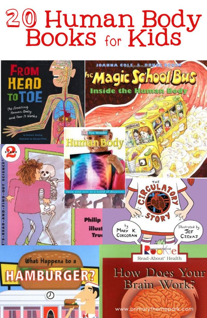 Twenty human body books for kids in kindergarten to third grade that would be perfect to incorporate into a human body systems unit of study.