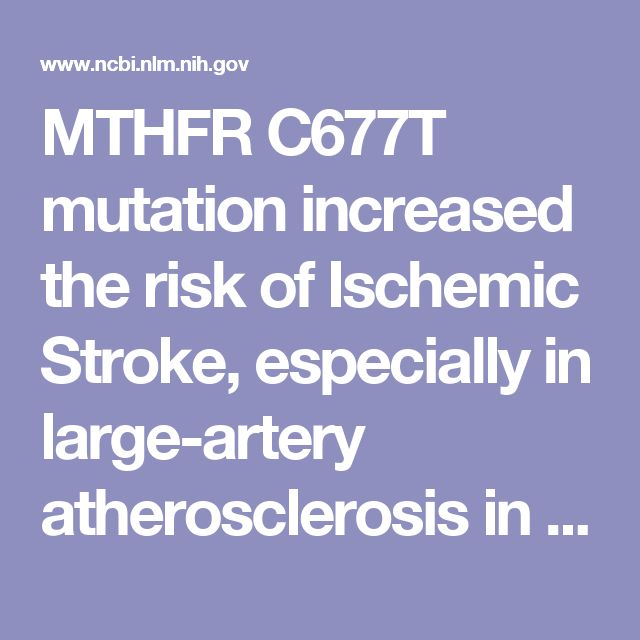 98 best mthfr gene images on pinterest doctors family tree chart mthfr c677t mutation increased the risk of ischemic stroke especially in large artery atherosclerosis fandeluxe Gallery