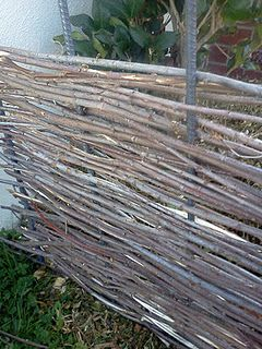 My wattle fence is looking good!  Next I need to cap it.  I found these super cool rebar caps but they're bright yellow-paint and a 2x4 will finish the top!