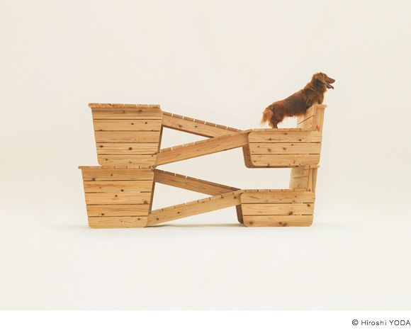 Architecture for Dogs is an earnest architectural project for a new happiness for dogs and humans alike, planned by world-famous architects and designers. By downloading blueprints and looking at photos of prototypes and instructional videos, anyone can build Architecture for Dogs, then take a photo afterwards, with a dog, and upload it onto the site.