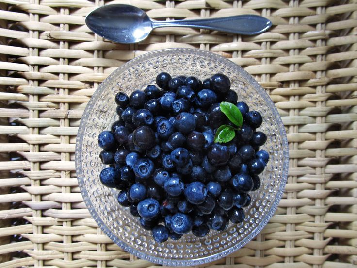 Mustikat – Blueberries