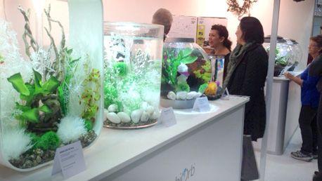 biorb aquarium | ... the Ideal Home Show - Reef One - Manufacturers of the biOrb aquarium