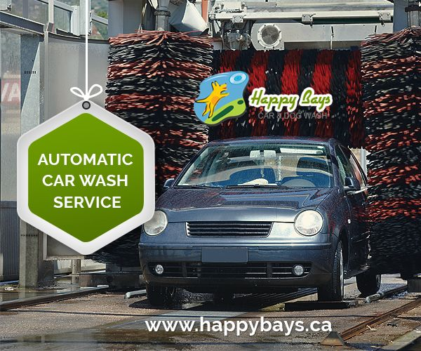 72 best car wash calgary images on pinterest calgary bays and berries happy bays car and dog wash providing car wash and dog wash in calgary we also offering pet wash self serve dog and car wash solutioingenieria Image collections