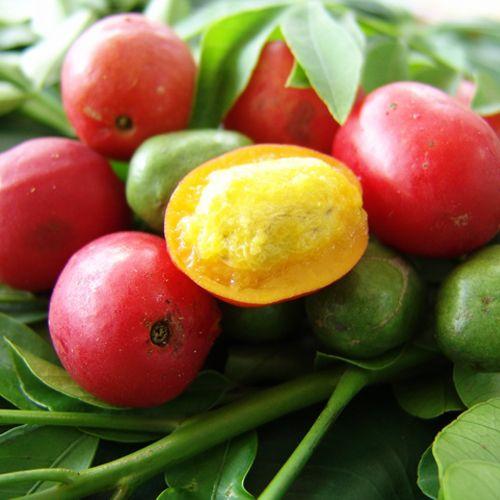 Frutas de A a Z - Ciriguela