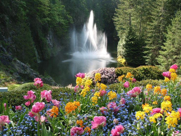 The Butchard Gardens, Victoria Island, BC.   The most beautiful flowers and gardens I have ever seen!  Loved it!