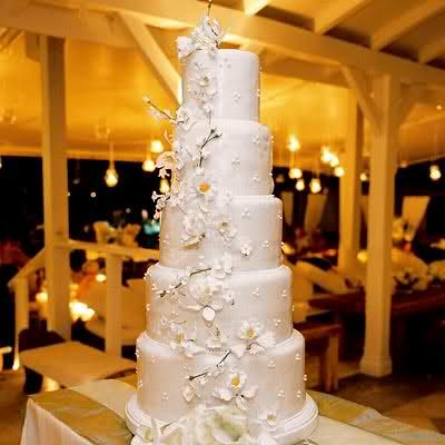 Jimmie & Chani's wedding cake