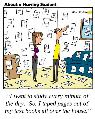 Nursing Classroom Design ~ Cartoon tip for nursing student study whenever you can