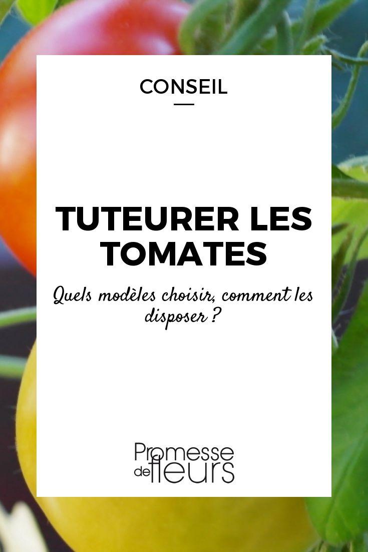 Les tomates ont besoin d\'être tuteurés. Quel piquet ou tuteur choisir ? Comment les disposer ? Suivez les conseils de nos experts potager !