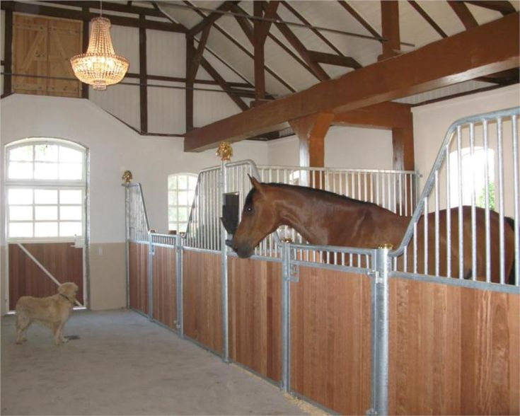 Inside Horse Barn ornate roof inside a horse barn / internal stables | equestrian