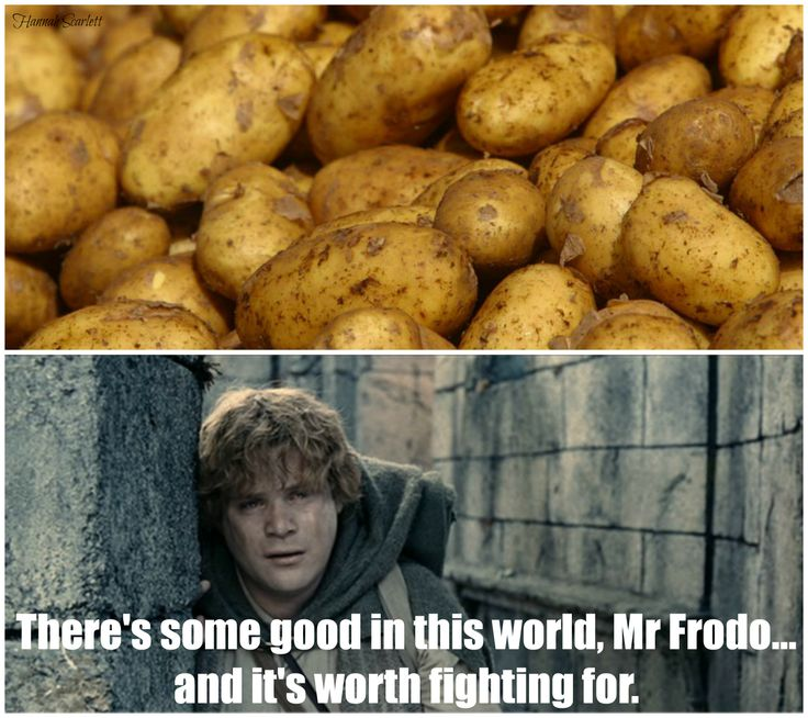 LOTR Potato meme