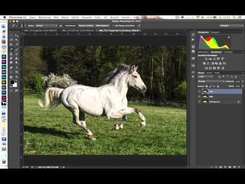Photoshop Pferdezaun entfernen