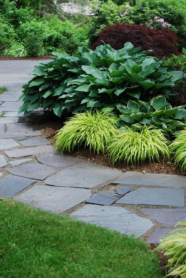 Carey Ezell Landscape Design. Bluestone walkway with weeping japanese maple, hosta and japanese fern grass