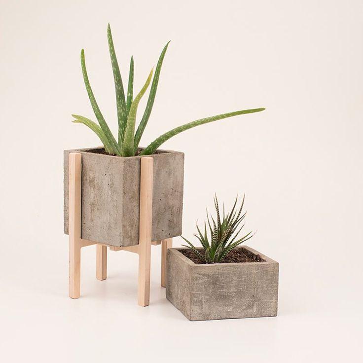 #Concrete planters by @vakodesign.