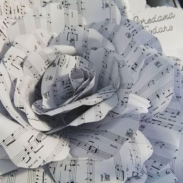 Fiori di carta giganti #fioridicarta #paperflowers #windowsdisplay #vetrine #sanremo #backdrop #pannellofioridicarta