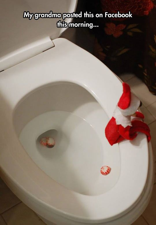 Elf Caught In The Toilet