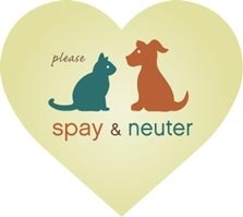 an argument in favor of spaying and neutering animals in the united states The real thrust of the akc's argument is economic  can be solved mainly by  teaching owners to spay or neuter their pets voluntarily  care and gourmet pet  food and dietary supplements and everything else that helps us.