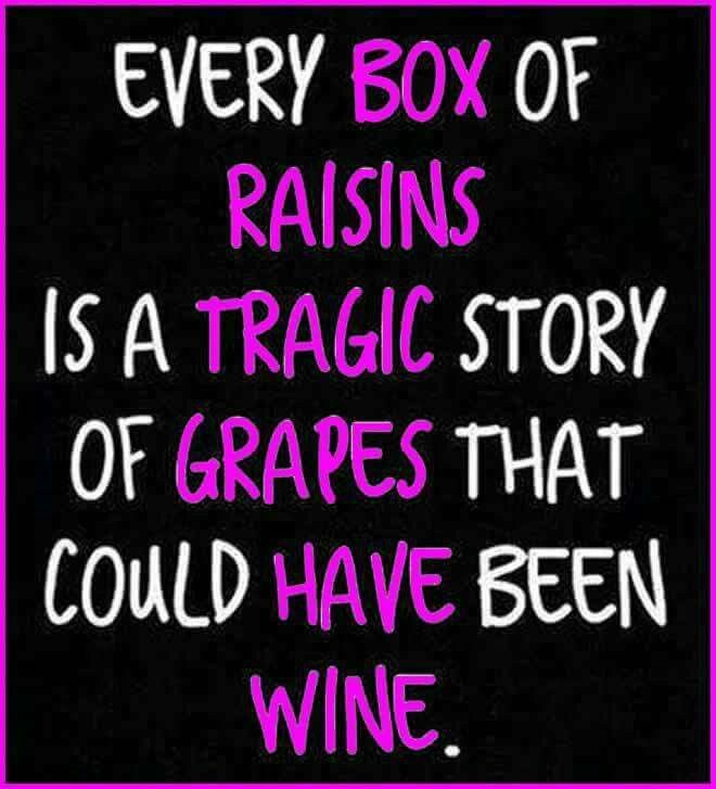 Best Wine Quotes: 42 Best Wine Quotes Images On Pinterest