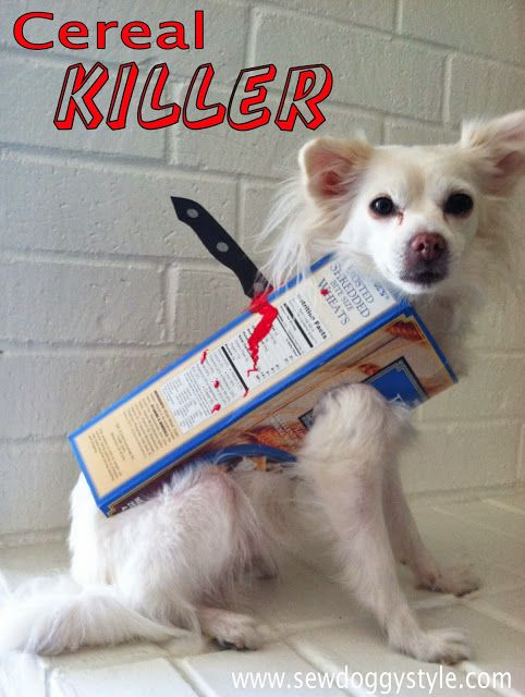 DIY Cereal Killer Costume for Dog.  Super easy, quick, and cheap.  Perfect for a last minute costume idea.