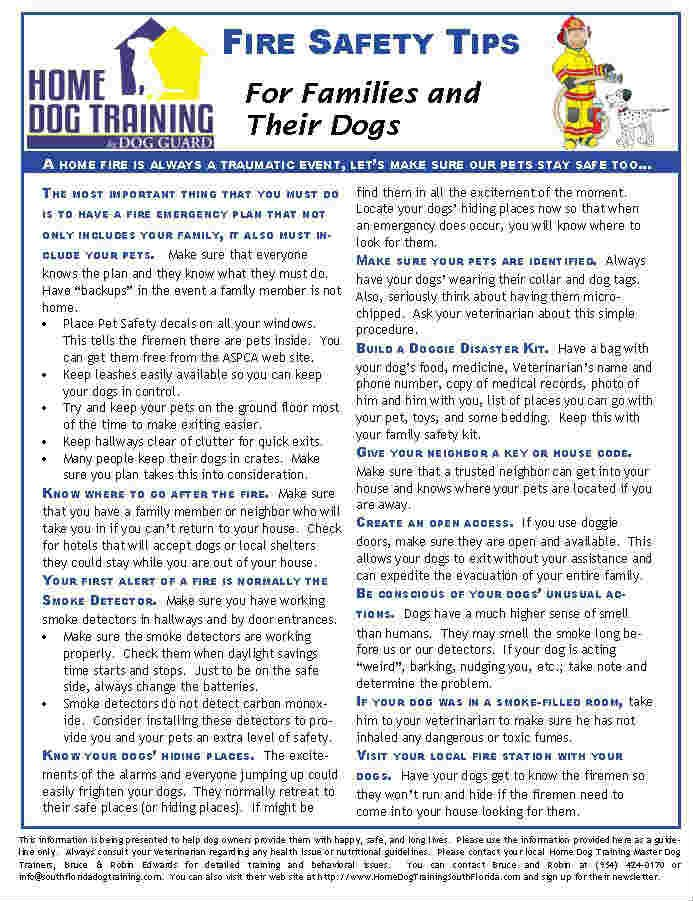43 best dog safety handouts images on pinterest dog for House fire safety tips