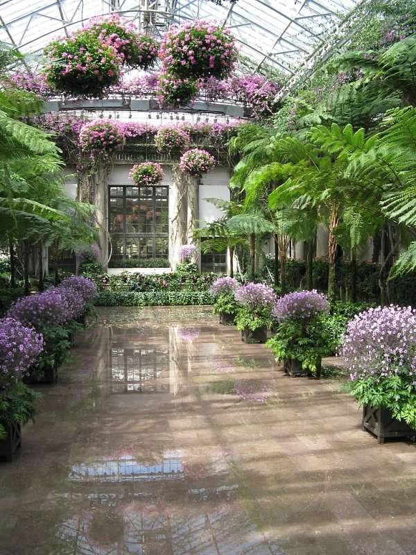 Longwood Gardens - such an amazing display of flowers, bonsai, tropicals, and water fountains.