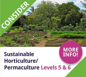 Sustainable Horticulture / Permaculture KInsale College