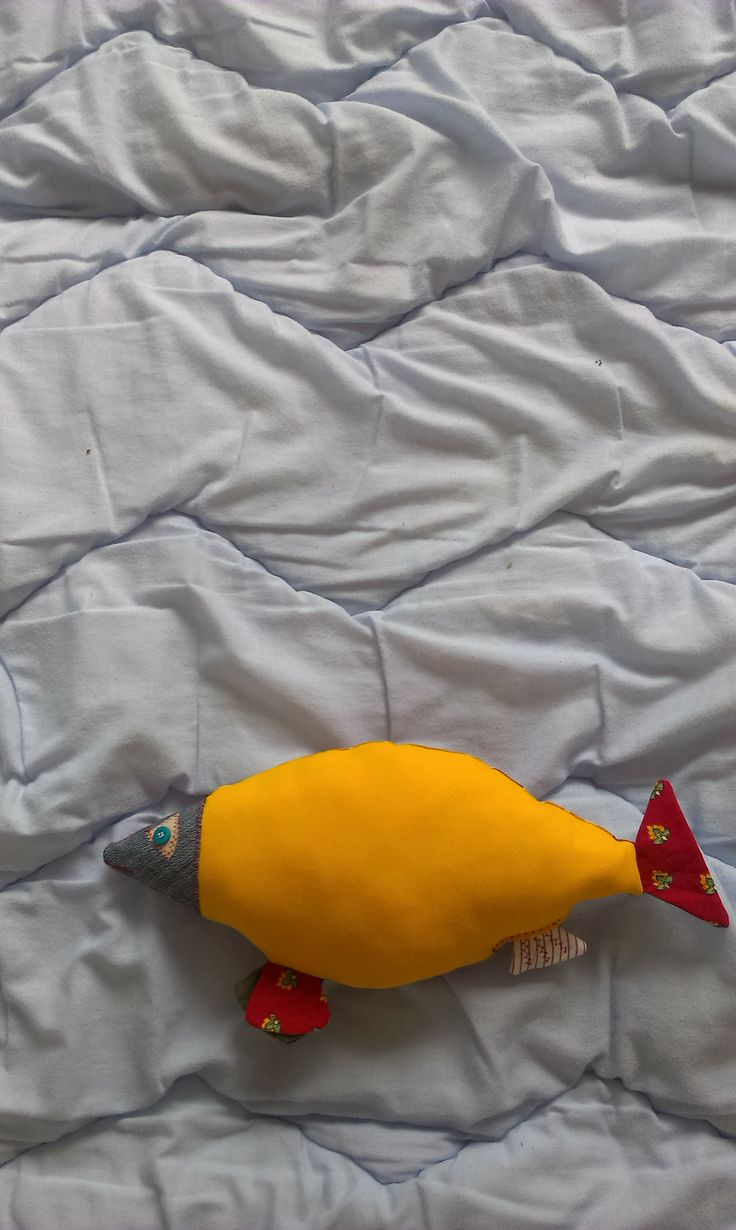 Such fish. Such fish floating on the infinite oceans of our bed.