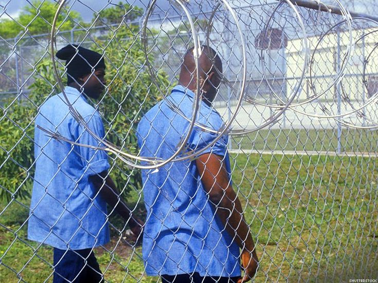 black men in the prison system essay Black women's lives are often shaped by the prison system because they have among low-education black men in which the penal system has evolved to be a.