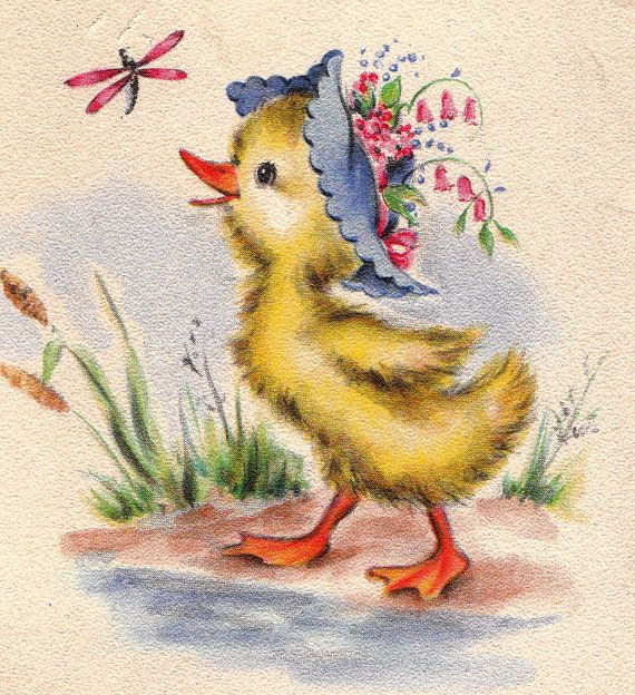 Cute ducky!!