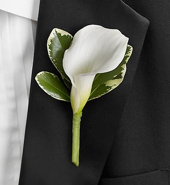 A single white Calla lily is the perfect boutonniere to add charm and elegance to your groom's tuxedo!