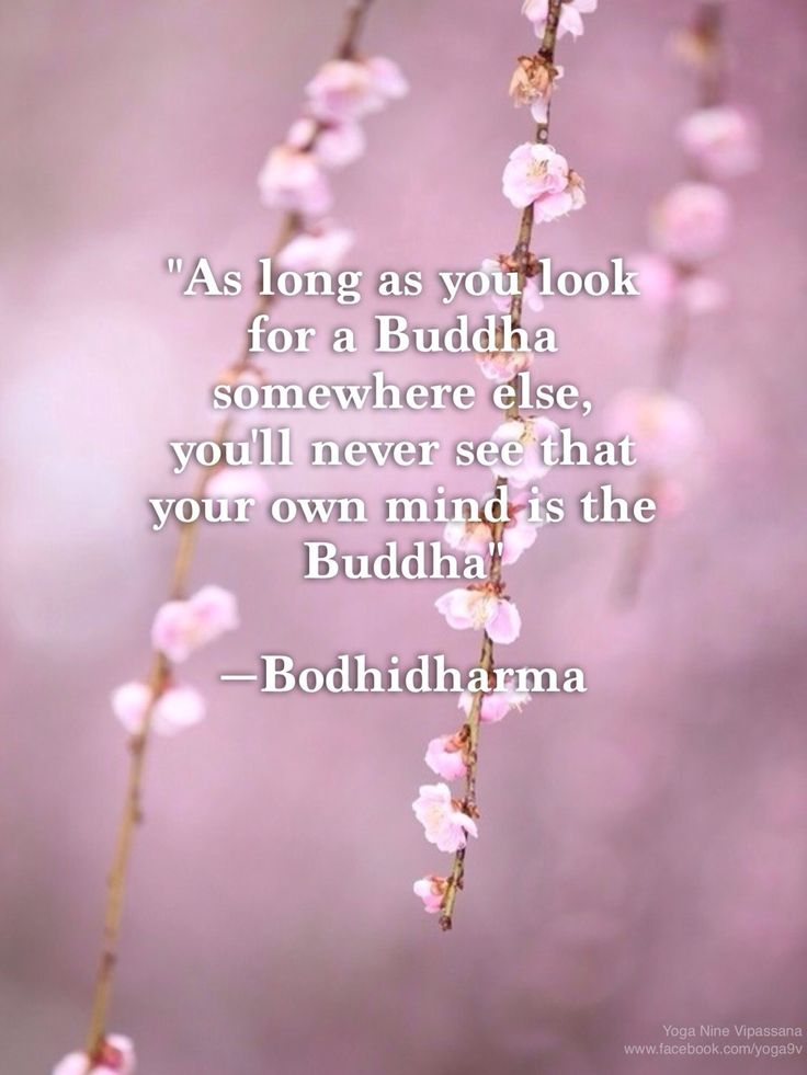 wisdom buddhist personals Retreats steeped in buddhist wisdom and perfectly suited to bring the environment of bodhisattva kmc is very relaxing and there is plenty of time between.