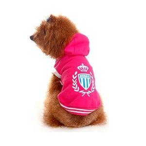 jacket...for shop dog....