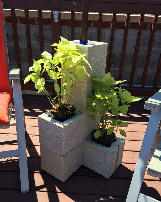 Plants Nestled In DIY Cinder Block Umbrella Stand