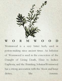 Wormwood - Pinned by The Mystic's Emporium on Etsy