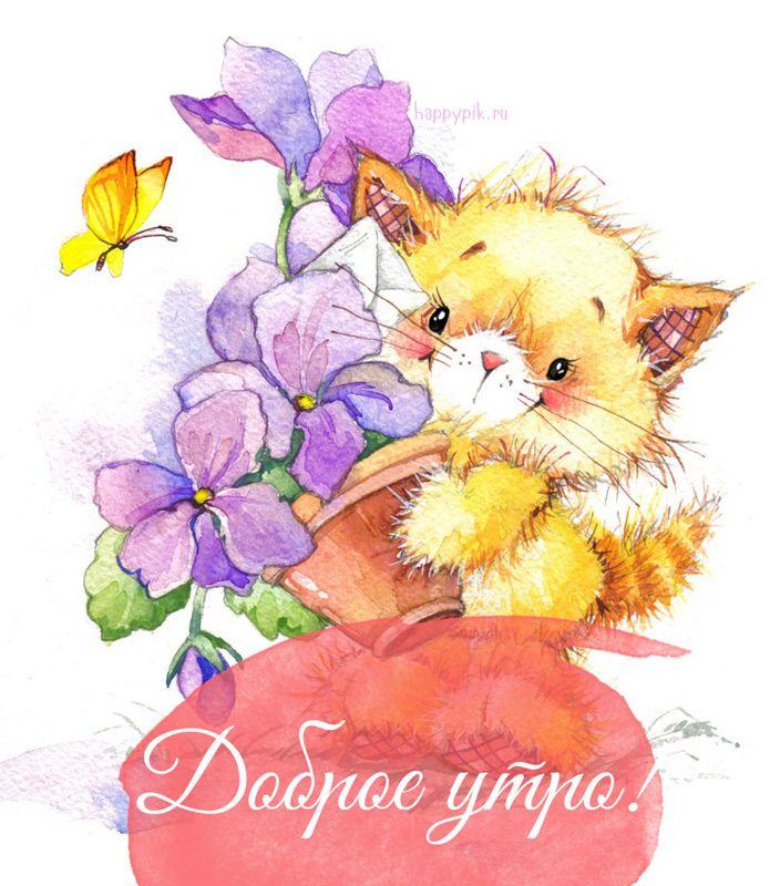 открытки доброе утро милый котик от зайки зависимости