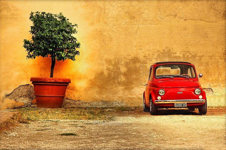 Basile FrancescoSmall Cars, Beautiful Italy, Pots Trees, Italian Stiles, 500 Italian, Italian Style, Italy, Fiat 500, Fiat500
