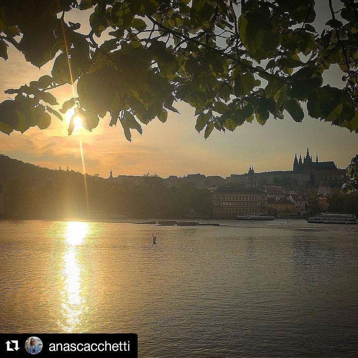 #Repost @anascacchetti Prague Castle View  Welcome Summer #sunny #summer #citybestpics #living_europe #nature #prague #bestcitybreaks #europe #travel #ig_europe #citybestpics