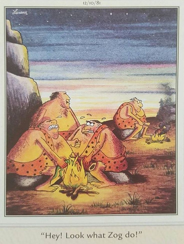 2255 Best Images About Far Side On Pinterest Gary Larson
