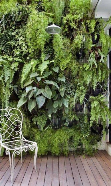 O pátio interno ganhou vida, um jardim vertical e uma ducha Divulgação