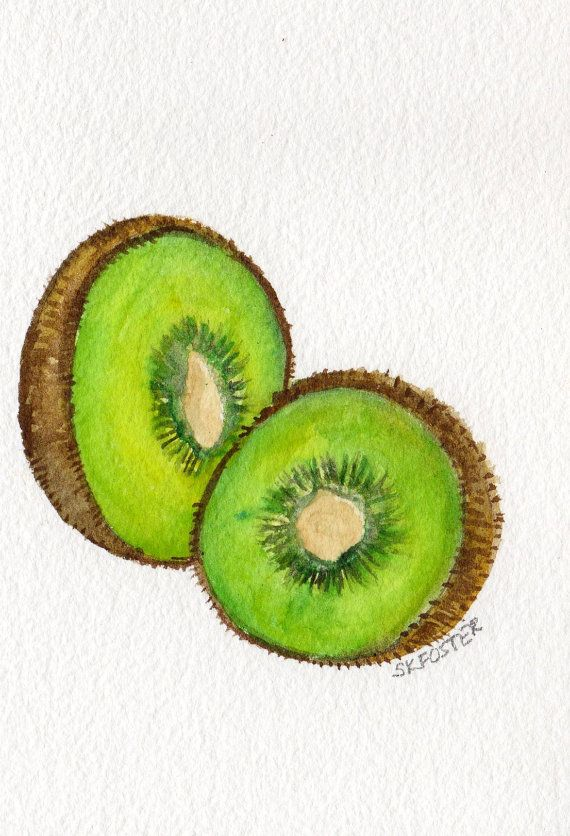 Kiwis Watercolor Painting  original ART 5 x 7 by SharonFosterArt, $15.00