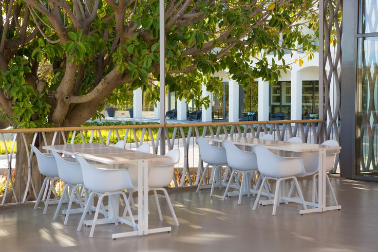 "Overlooking the pools, Orangea Bistro is one of OZADI's restaurants. With its trendy atmosphere, it is ideal for leisurely lunches or an afternoon snack. The bistro also has a regionally-inspired ""Tapas and Wine"" menu. And, in the evening, it offers a menu of Mediterranean and other dishes, for leisurely dinners in a more intimate atmosphere. At Orangea there are lounge areas for enjoying a drink from the bar, while you relax with your partner or friends. (©all rights reserved)"